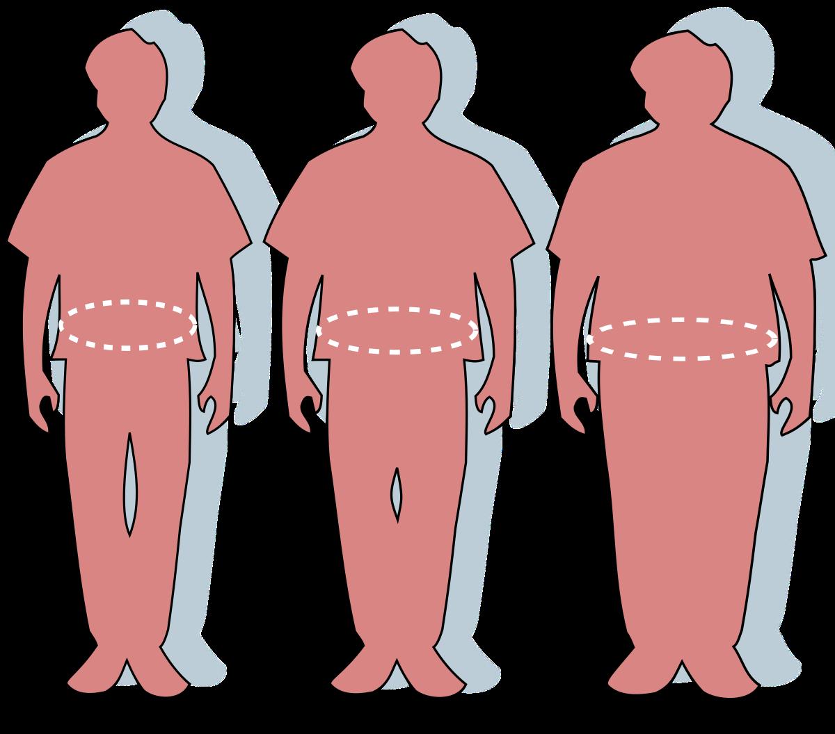 tipul obez pierde in greutate