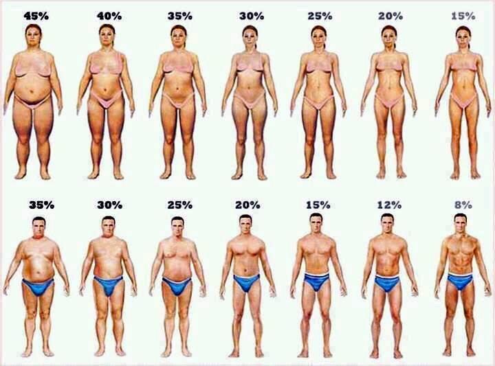 cum să pierzi grăsime, mai degrabă decât în greutate