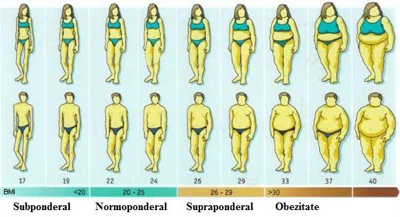 pierdere de grăsime corporală femeie