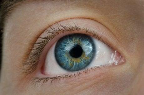 pierderea în greutate îmbunătățește vederea