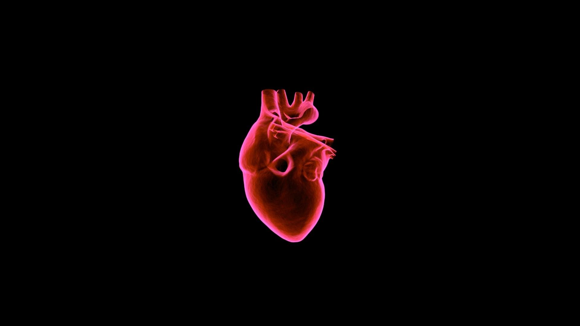 rezultate multiple subțiri arderea grăsimilor de organe