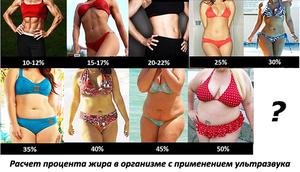pierde 22 grăsime corporală pierderea în greutate a nisipului