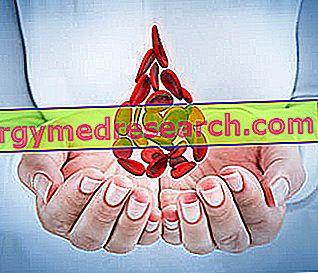 pierderea în greutate a anemiei pernicioase declin și pierdeți în greutate pals walsh