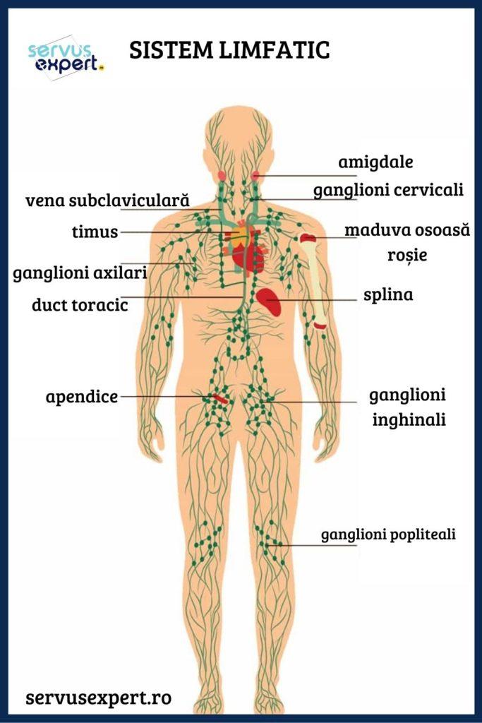 pierderea în greutate și ganglioni limfatici