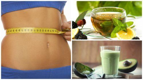 Bauturi recomandate si interzise in dieta - Dietă & Fitness > Dieta - autovehicule-rutiere.ro