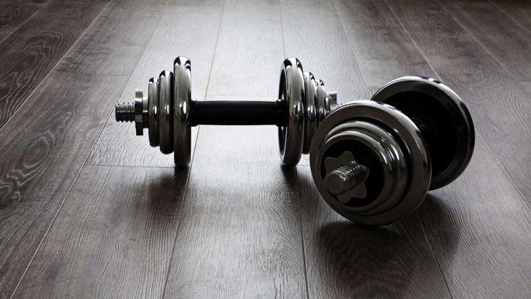 lavală pierdere în greutate Pierdere în greutate border border collie