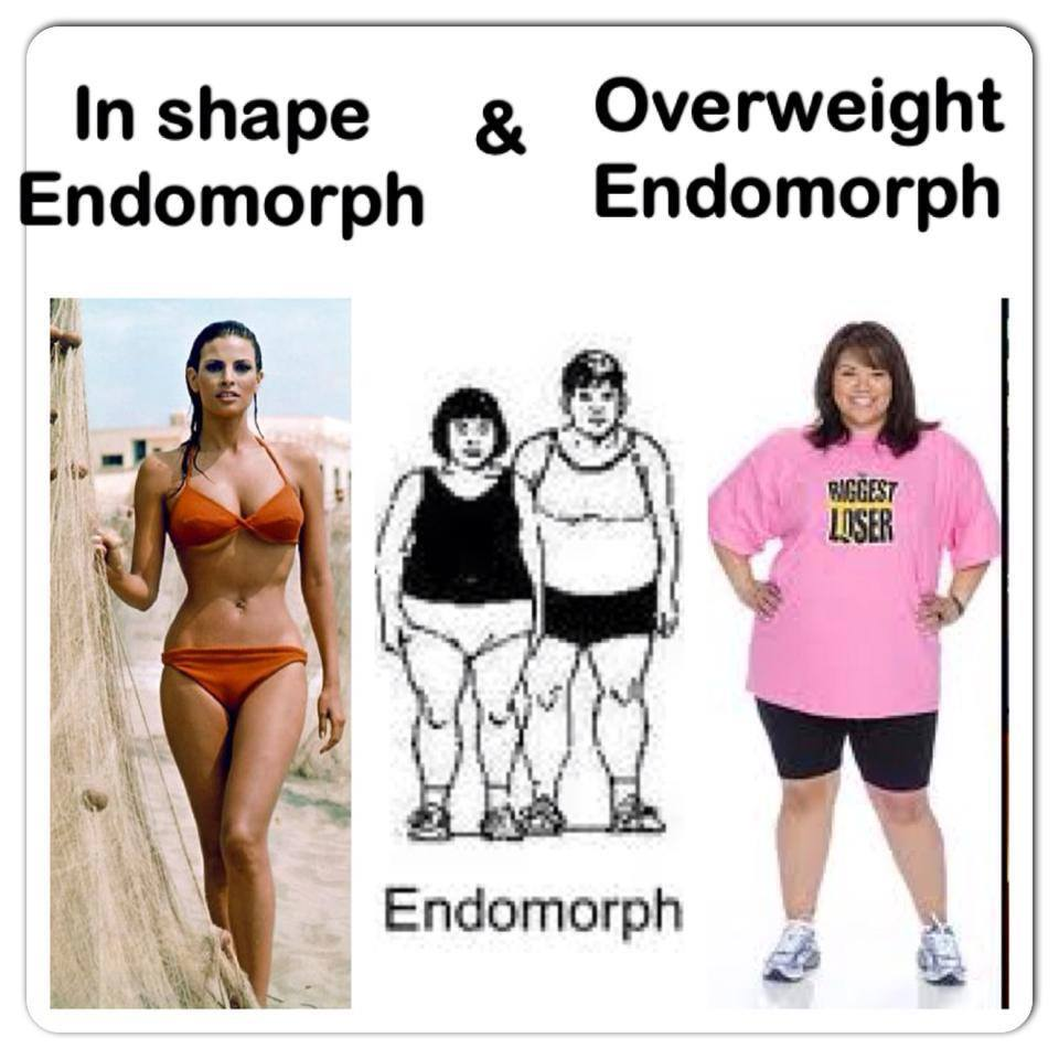 tipul de corp vs pierderea de grăsime Perioada de renastere pierderea de grasime