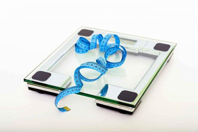 b6 slăbește Pierdere în greutate de 10 zile