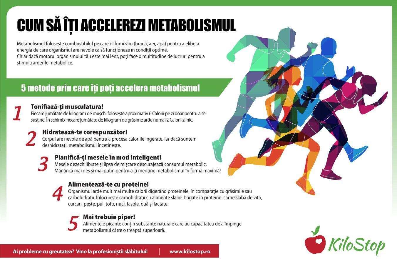 metabolismul mai mare arde grăsimea