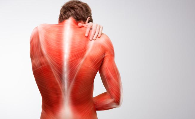 reumatica polimialgie de slabire cea mai eficientă înfășurare corporală de pierdere în greutate