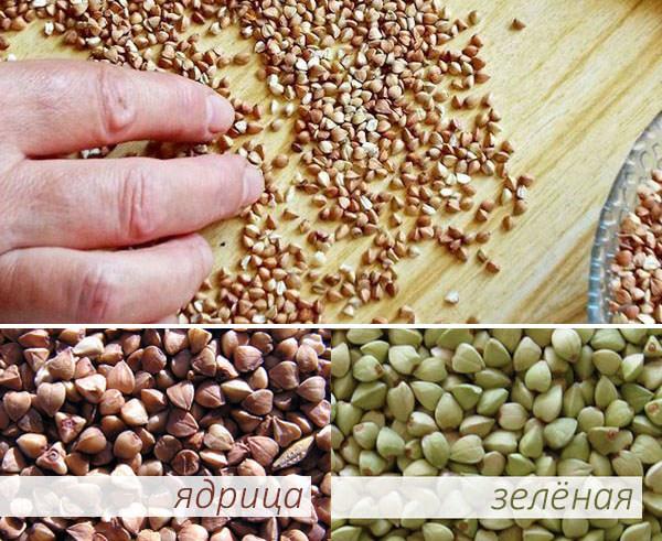 Proteine de soia pentru pierderea în greutate pentru fete