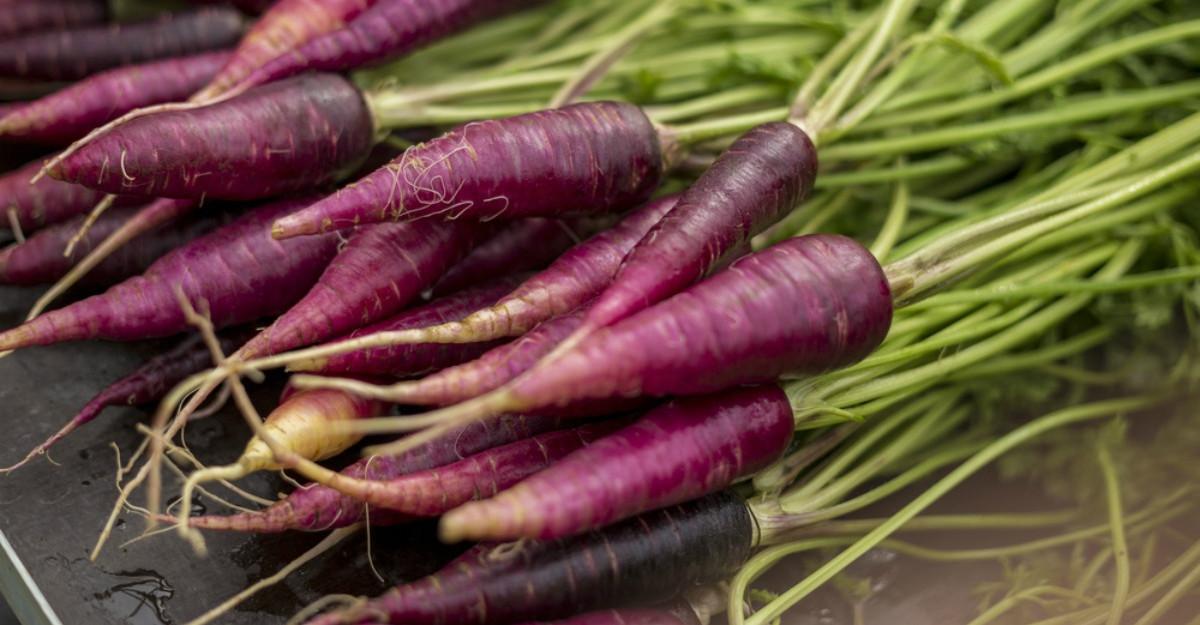 morcovul violet pierde în greutate