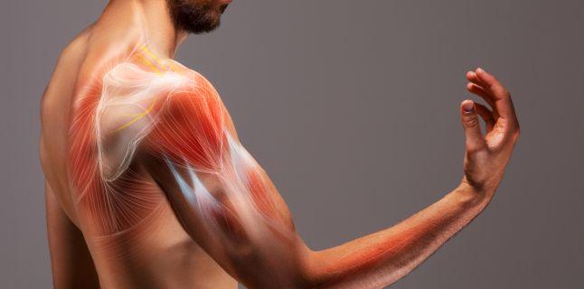simptome slăbiciune și pierdere în greutate