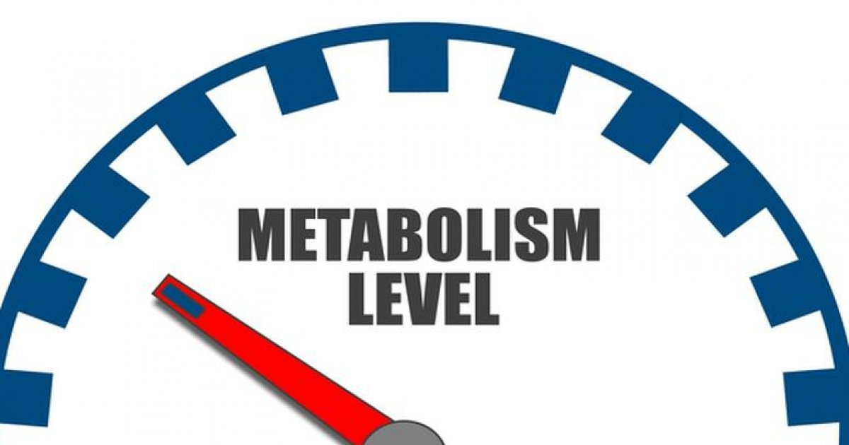 metabolismul accelerează după pierderea în greutate