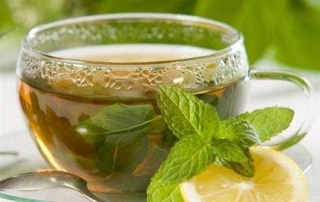 stimulează metabolismul și arde băutură grasă
