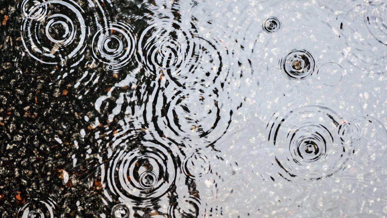 pierderea în greutate de ploaie slăbește la 58 de ani