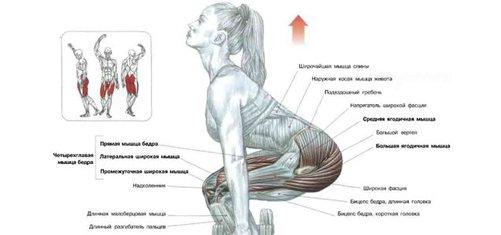 cum să elimini grăsimea din partea inferioară a spatelui pierdere în greutate natasha coleman