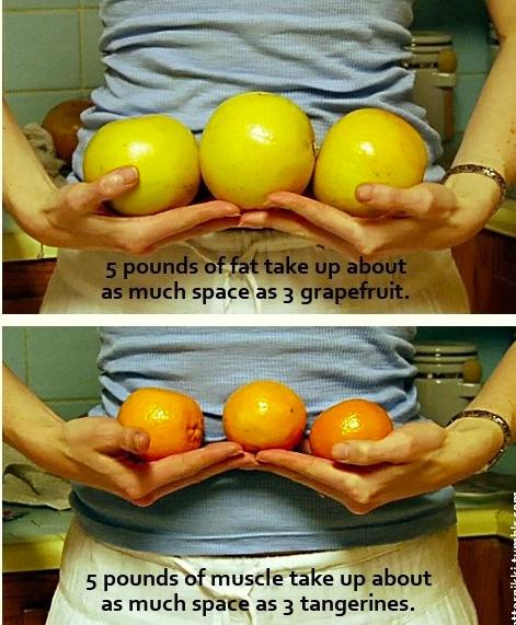 Adevărul despre ceea ce se întâmplă cu grăsimea în urma pierderii kilogramelor în exces