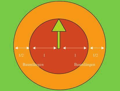 scădere în greutate a arborelui tambur